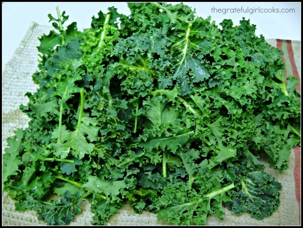 Raw kale from garden on dish towel
