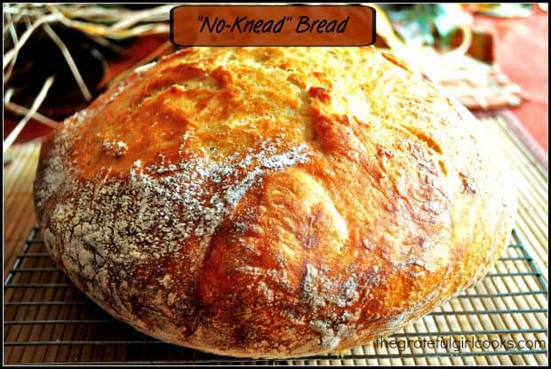 No-Knead Bread / The Grateful Girl Cooks!  It's EASY to make this delicious artisan bread!