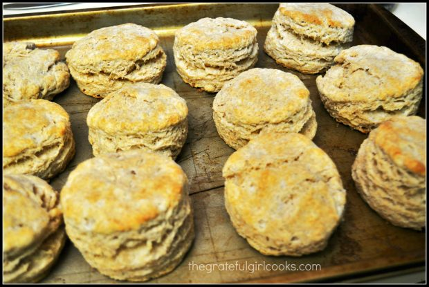 Baked biscuits on a baking sheet.