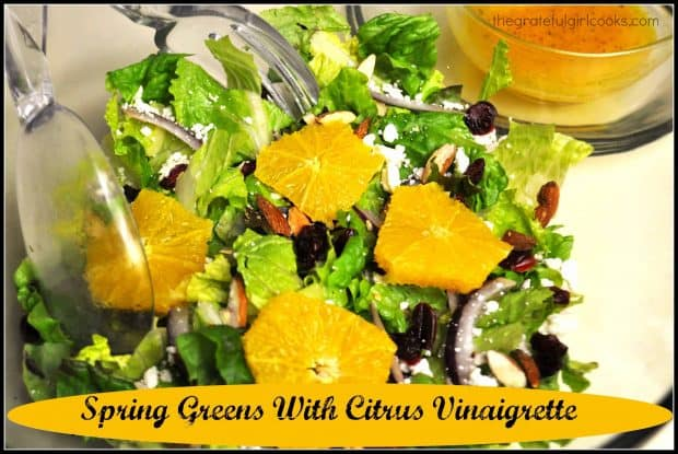 You will enjoy this light and refreshing spring greens salad, with oranges, cranberries and feta, and a citrus vinaigrette dressing!