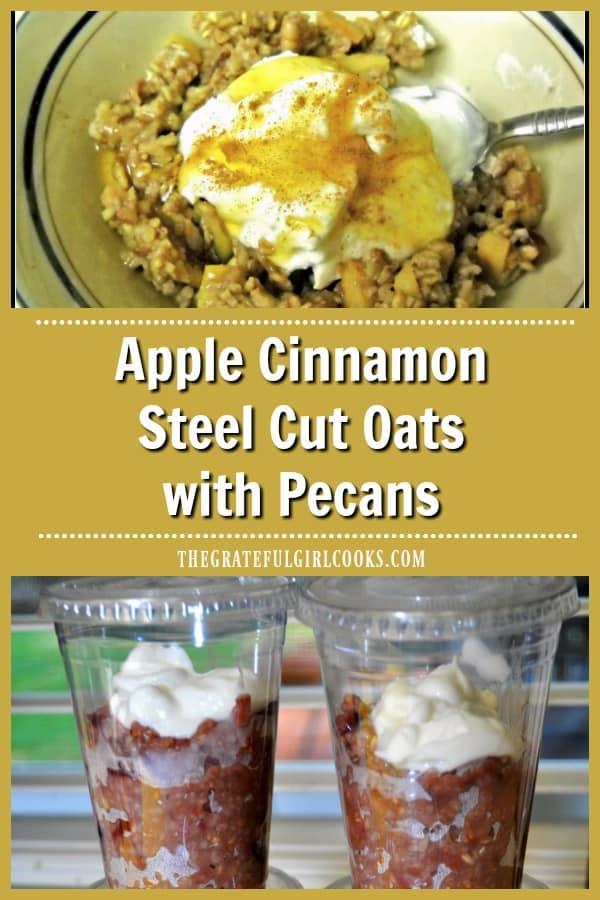 Apple cinnamon steel cut oats with cinnamon, pecans, cranberries, brown sugar, garnished w/ Greek yogurt and honey will be a favorite breakfast treat. Yum!