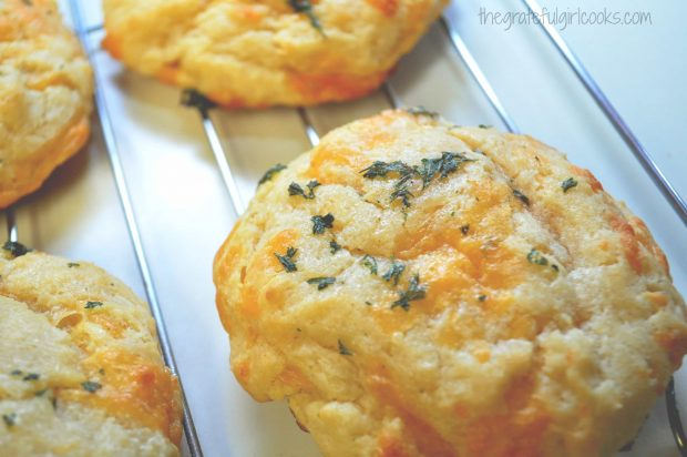 Red Lobster Cheddar Biscuits / The Grateful Girl Cooks!