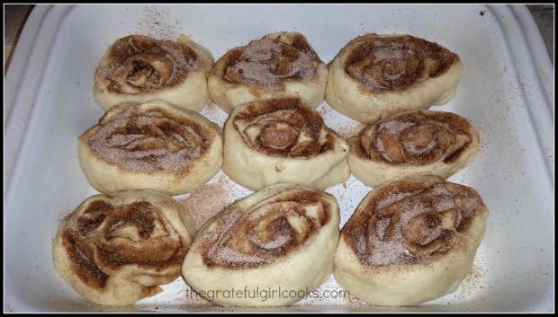 Homemade Cinnamon Rolls / The Grateful Girl Cooks!