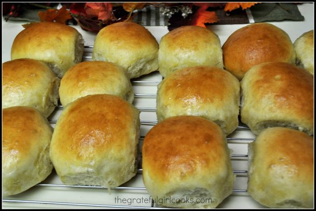 Homemade dinner rolls on wire rack, ready to eat.