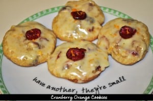 Cranberry Orange Cookies / The Grateful Girl Cooks!