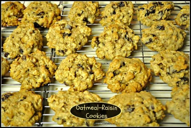 This traditional recipe for soft, chewy Oatmeal Raisin Cookies is easy to prepare. The cookies are absolutely delicious, and the recipe makes 4 dozen.