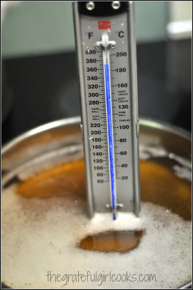 Thermometer for frying chicken in oil