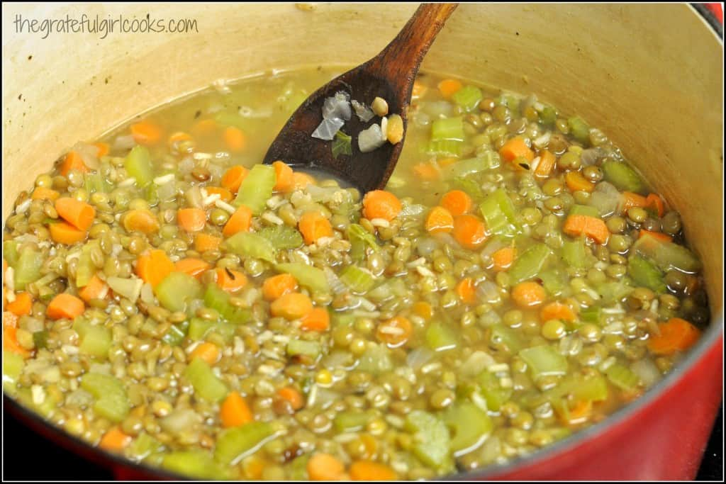 Lentil Stew / The Grateful Girl Cooks!