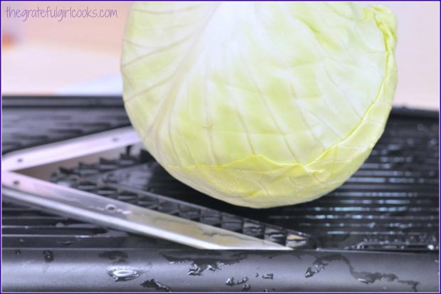 Green cabbage is shredded on a mandoline or box grater.