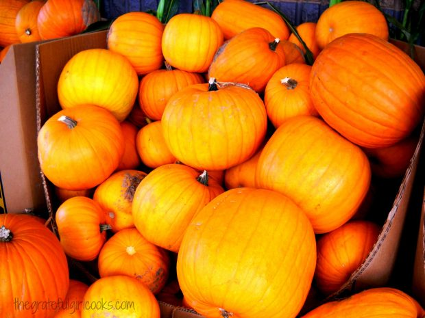 """Pie"" or ""Sugar"" pumpkins are used to make pumpkin puree, versus regular pumpkins."