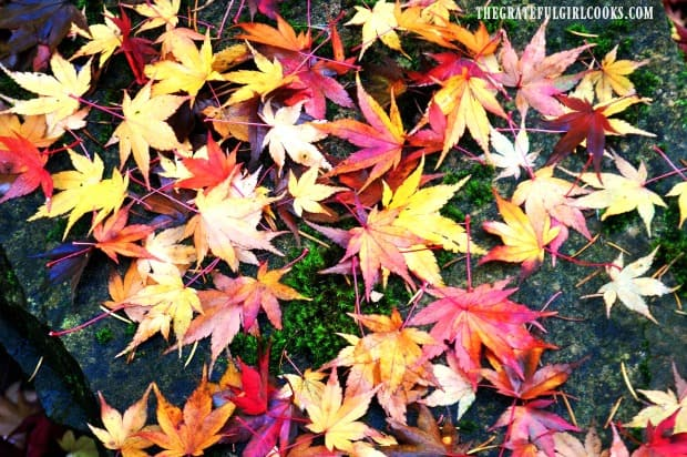 Fall leaves indicate it's time to make apple crisps, pies and cobblers!