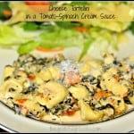Cheese Tortellini in a Tomato-Spinach Cream Sauce