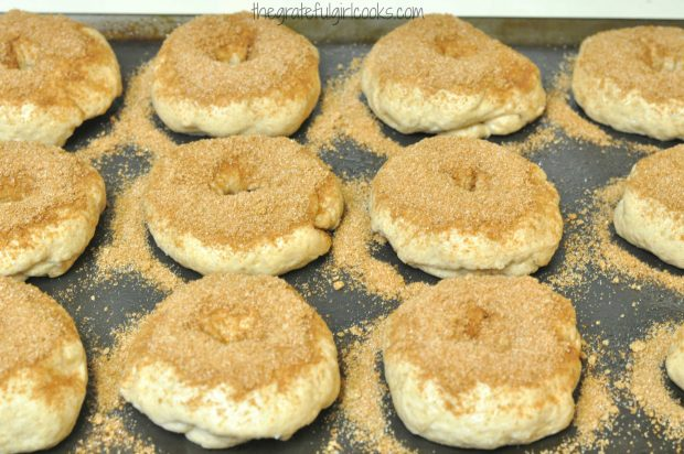 Cinnamon Crunch Bagels are topped with cinnamon sugar mix before they bake.