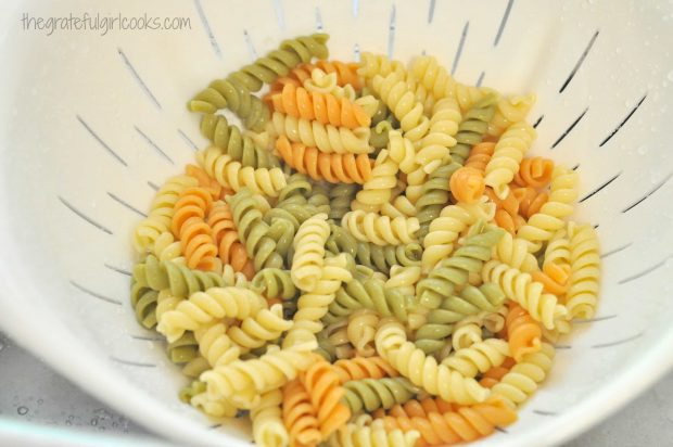 Cooked tri-color rotini pasta is drained, for salad