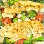 Honey Garlic Chicken And Veggies