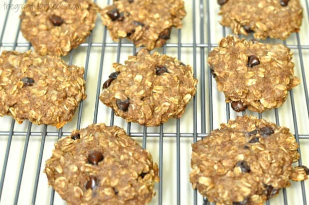 Baked 21 day fix oatmeal chocolate chip oatmeal cookies, cooling on wire rack.