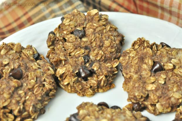 Three baked 21 day fix oatmeal chocolate chip cookies on white plate.