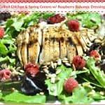 Grilled Chicken & Spring Greens w/ Raspberry Balsamic Dressing