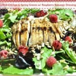 Grilled Chicken & Spring Greens w/ Raspberry Balsamic Dressing