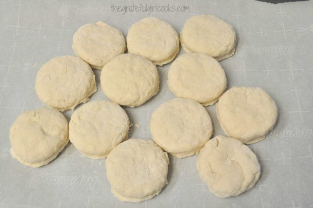 Biscuit dough cut out and ready to bake