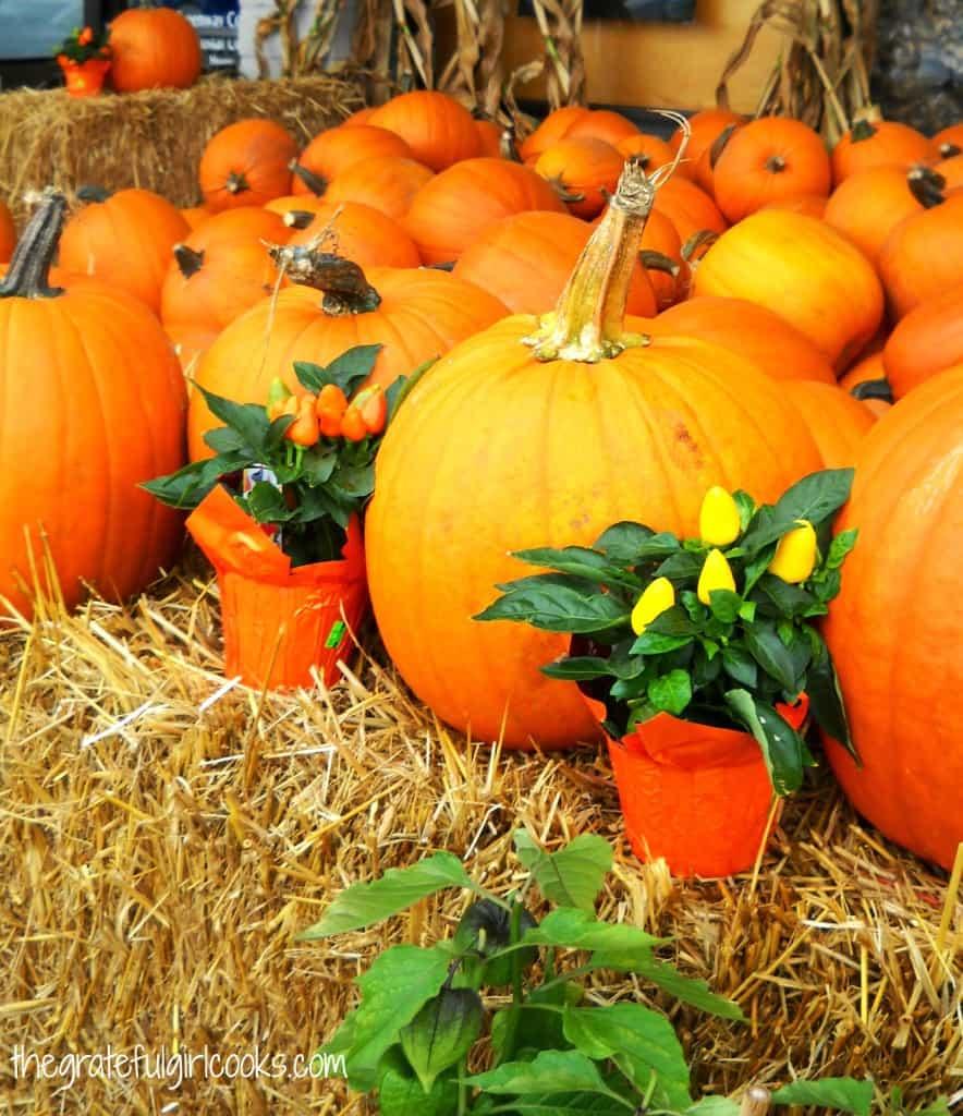 How To Roast Pumpkin Seeds / The Grateful Girl Cooks!