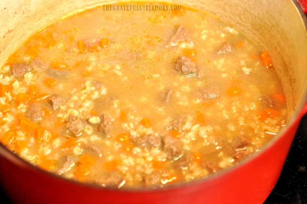 Beef and Barley Soup / The Grateful Girl Cooks!