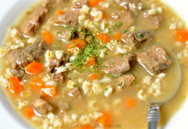 Soup with beef, carrots and barley in white bowl