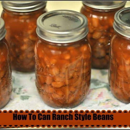 How To Can Ranch Style Beans The