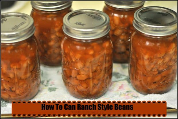 """Ranch style beans are a perfect """"grab and go"""" side dish for chicken, hamburger, hot dogs, etc. Learn how to make and can them for long term storage!"""
