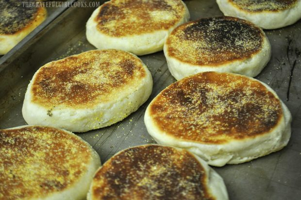 Finished English muffins on baking sheet.