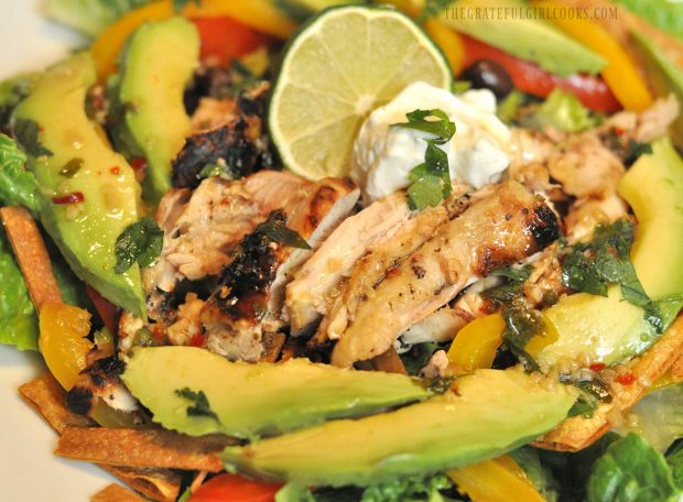 Close up photo of chicken fajita salad