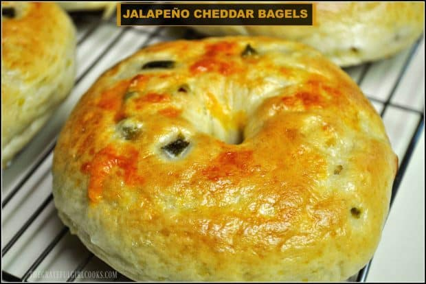 Make your own incredibly delicious jalapeño cheddar bagels from scratch! Bagels are much easier to make than you might think... pass the cream cheese!