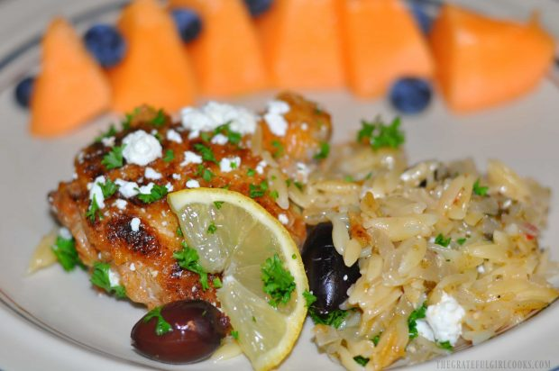 The chicken and orzo, served on a plate with fresh cantaloupe and blueberries on the side.