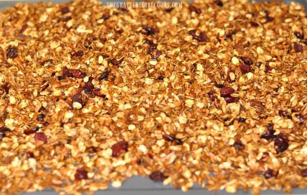 Gingerbread Granola is done baking, and dried cranberries are added to mixture.