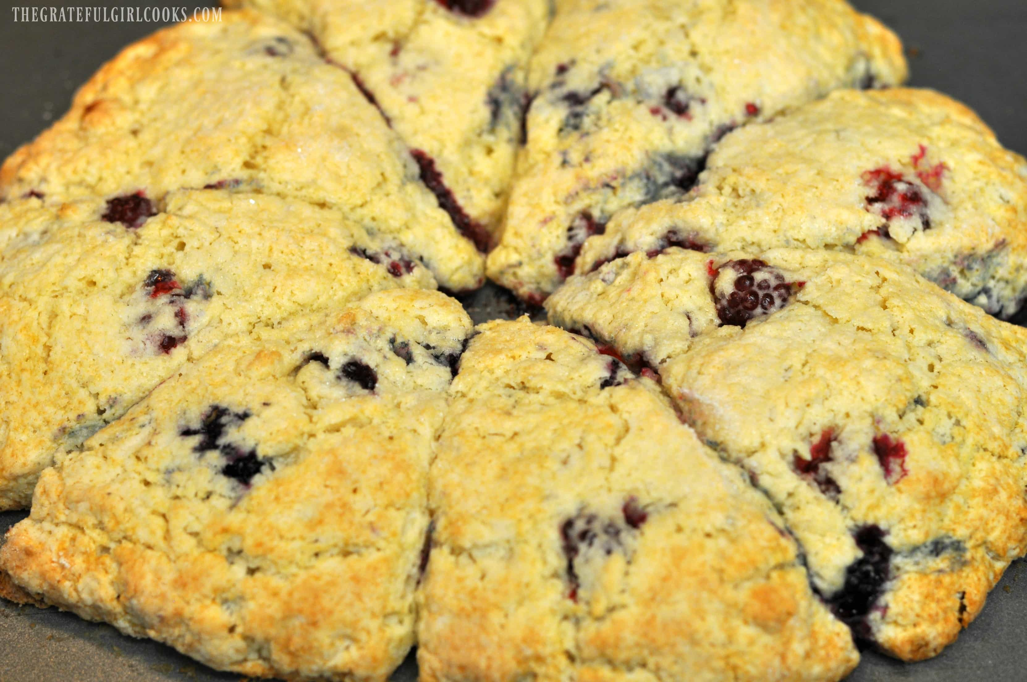 Blackberry Scones / The Grateful Girl Cooks!