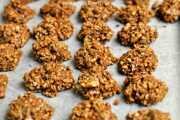 Chocolate Oaties / The Grateful Girl Cooks!