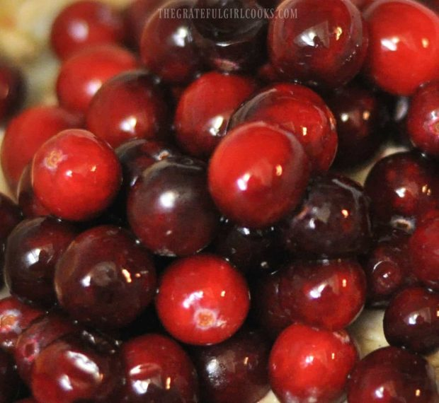 Whole Berry Cranberry Orange Sauce / The Grateful Girl Cooks!