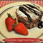 Chocolate Angel Food Mug Cake