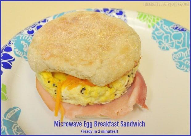 Microwave Egg Breakfast Sandwich The