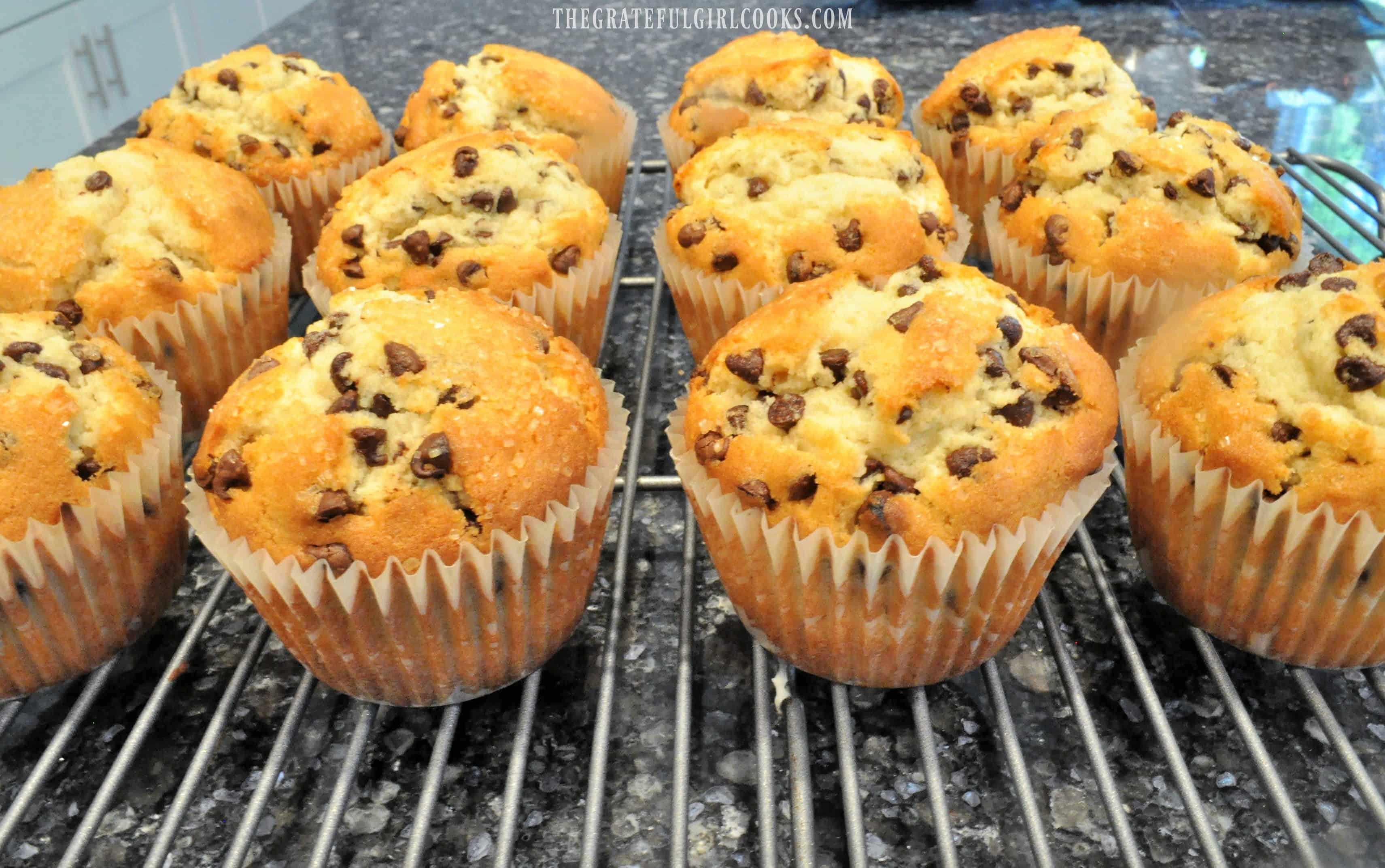 Chocolate Chip Muffins / The Grateful Girl Cooks!