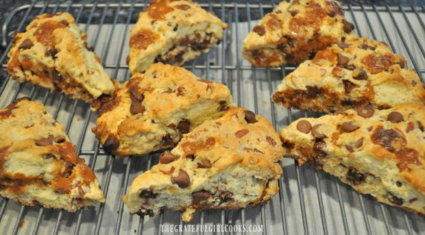Eight baked chocolate caramel scones, cooling on wire rack