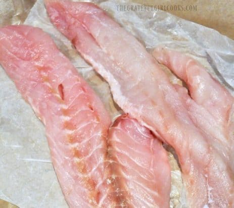 Rockfish fillets, used to make Grilled Fish Tacos