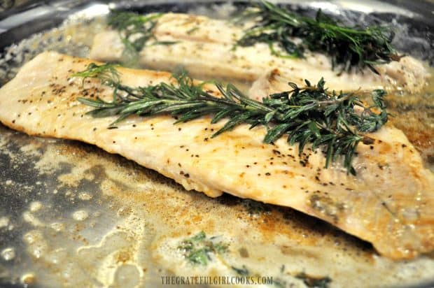 Rockfish fillets cooking, with rosemary and other fresh herbs on top