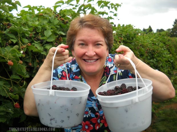 Two buckets of fresh picked blackberries- time to make JAM!