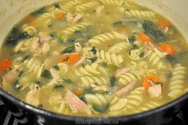 A big pot, full of homemade chicken noodle soup.