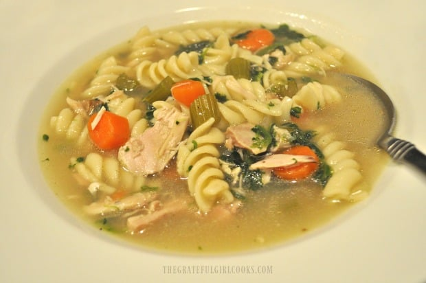 A bowl of hot chicken noodle soup is ready to eat!
