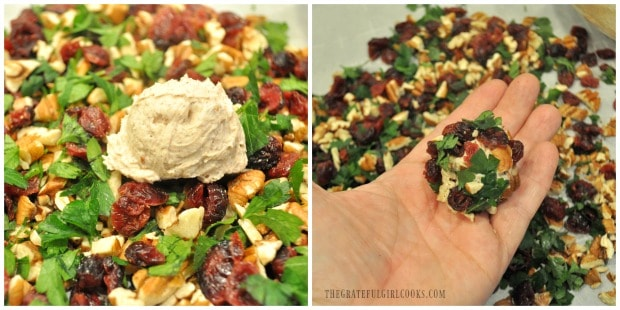 Cranberry pecan goat cheese bites are rolled in parsley, cranberries and pecans, to cover.
