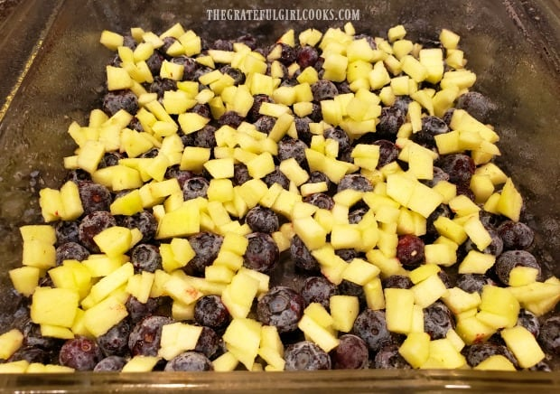 Blueberries and chopped apples are spread across the bottom of baking dish for blueberry baked oatmeal.