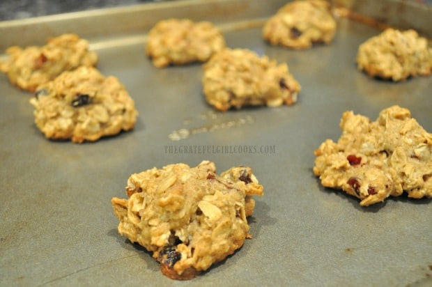 The oatmeal cranberry pecan cookies are baked until done and golden brown.