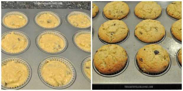 Banana chocolate chip muffins are prepared in muffin tins, then baked until golden brown.
